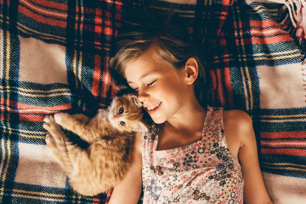 Animais domésticos - menina brinca com filhote de gato