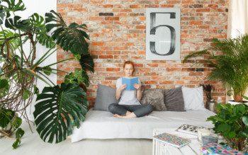 Plantas em casa: mulher relaxa e lê um livro