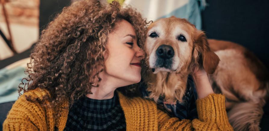 Abra seu imóvel pros animais domésticos e alugue mais rápido