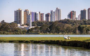 Quiz: quais bairros de Curitiba têm a sua cara?