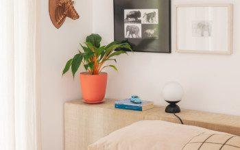 Plantas no quarto dão um up na decoração e te ajudam a dormir melhor