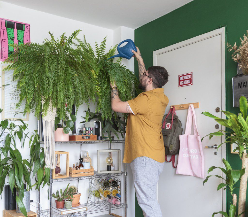 Apartamento alugado - Plantas
