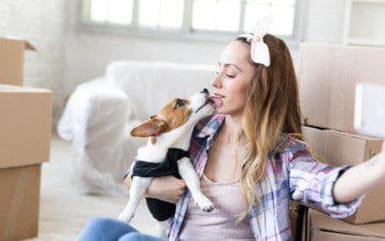Mudança com pets: 5 dicas pra uma melhor adaptação dos bichinhos à casa nova