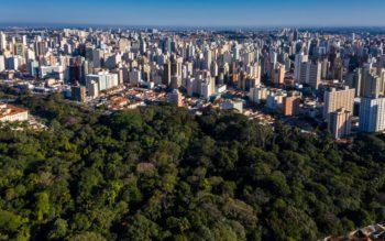 Foto que ilustra matéria sobre os melhores bairros de Campinas mostra uma área verde da cidade em primeiro plano, com altos prédios ao fundo.